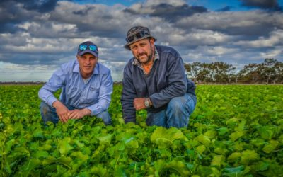 Digitising agronomy practices with AgWorld