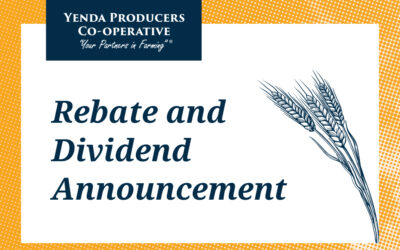 Rebate and Dividend Announcement